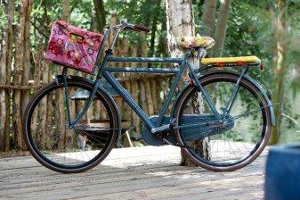 Bikecap bici2