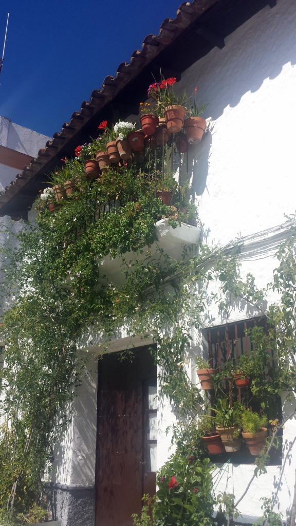 flores balcón Alajar