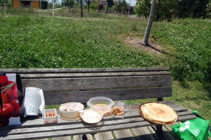 picnic en parque francesc macia