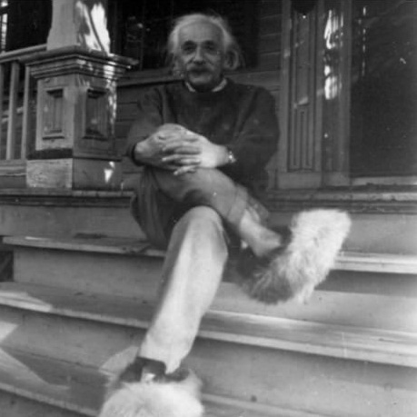 furry_shoes_Einstein